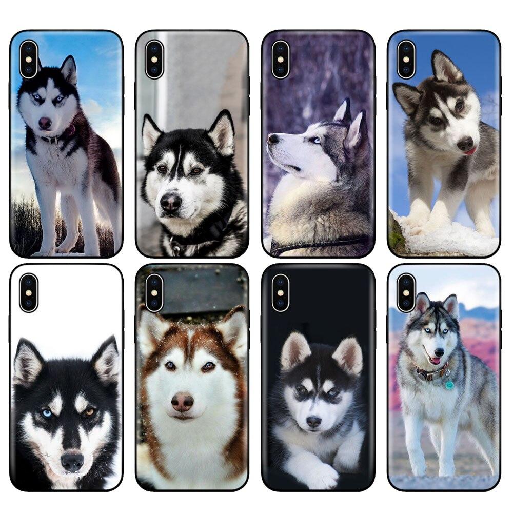 Negro tpu caso para iphone 5 5s SE 2020 6s 6 7 8 plus x 10 caso funda de silicona para iphone XR XS 11 pro Max caso husky cachorro de perro
