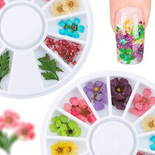 12 Color Nail Art Nature Dry Flowers Set Gel Polish Tip 3D DIY Floral Slices Decal Pro  Pedicure Decor Newest Kit