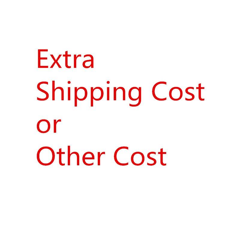 تكلفة شحن إضافية أو تكلفة أخرى