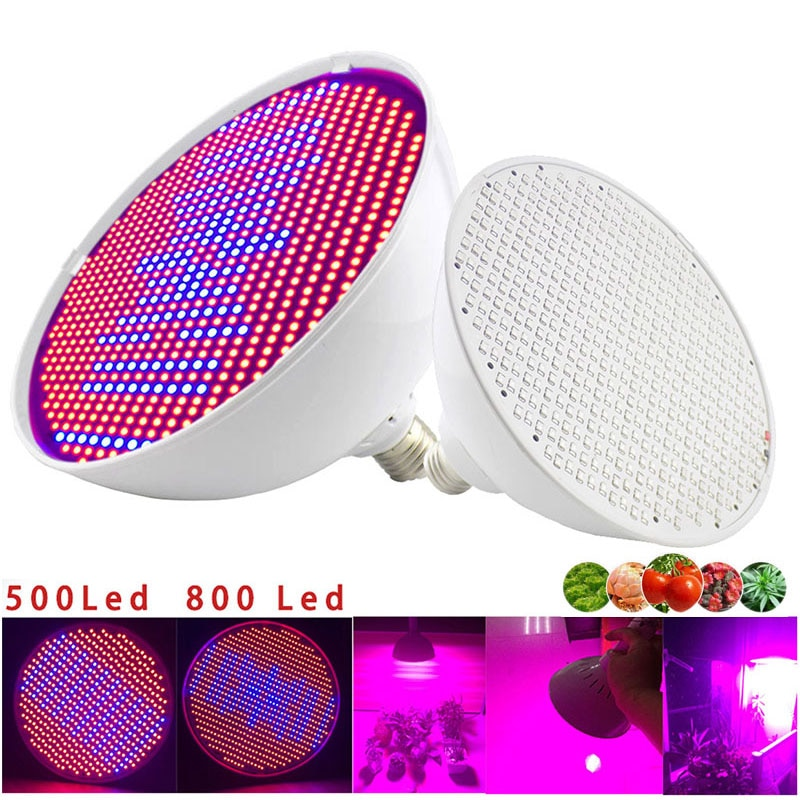 Potente luz LED para cultivo de plantas de 800 pulgadas para interiores, flor hidropónica de espectro completo, carpa para lámpara fito, invernadero de semillas de verduras, Caja de cultivo E27
