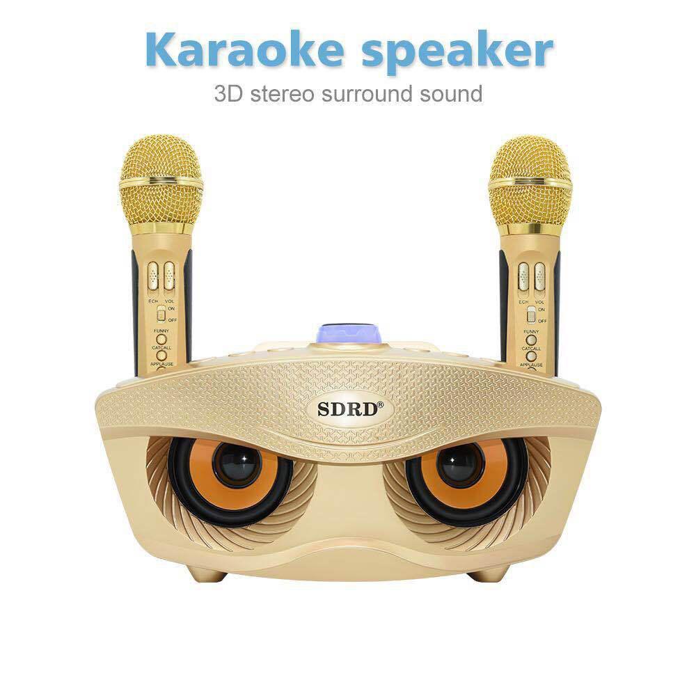 MeterMall SD306 MICRÓFONO INALÁMBRICO Dual Bluetooth altavoz móvil inalámbrico Karaoke altavoz inalámbrico conjunto de altavoces estéreo inalámbricos