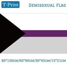 Voorgestelde Aparte Demisexual Vlag Voor 90*150 cm 60*90 cm 40*60 cm 15*21 cm Hand Vlag Voor Party Event Kantoor