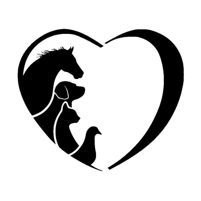 12,7*10,9 CM caballo gato perro veterinario Animal amante vinilo coche adhesivo creativo de dibujos animados ventana decorativo calcomanías C6-1342
