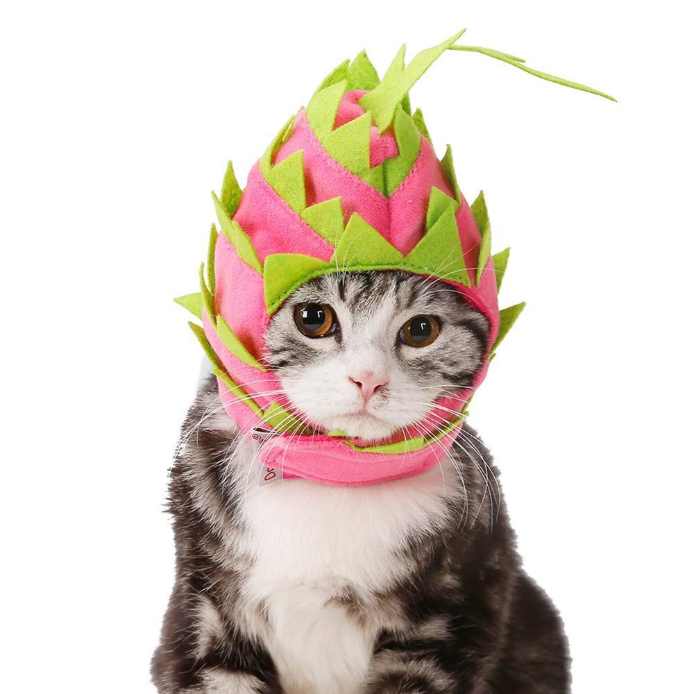 NACOCO Cat Pitaya Hat Dog Halloween Fruit Headwear Pet Cute Cap Costume Party Dress Up