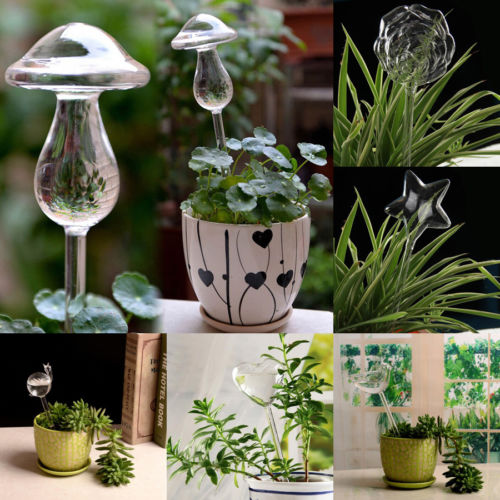 Planta de vidrio flores alimentador de agua auto riego diseño de aves planta Waterer 6 tipos