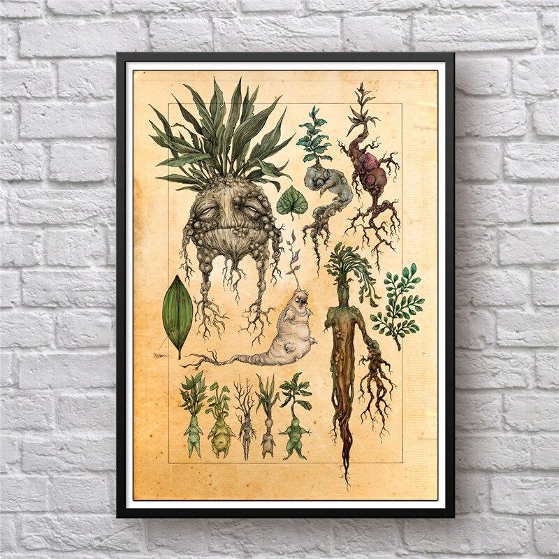 Ilustración artística de Harry Fan, decoración de mandrágora, pintura en lienzo, cuadro de pared, mandrágora de planta de bonito póster, Impresión de decoración para habitación de niños