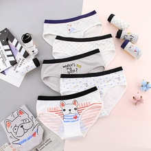 2019 New Teenage Underpants Dog Printed Young Girl Briefs Cartoon Panties Girl Cotton Panties Kids Underwear 670
