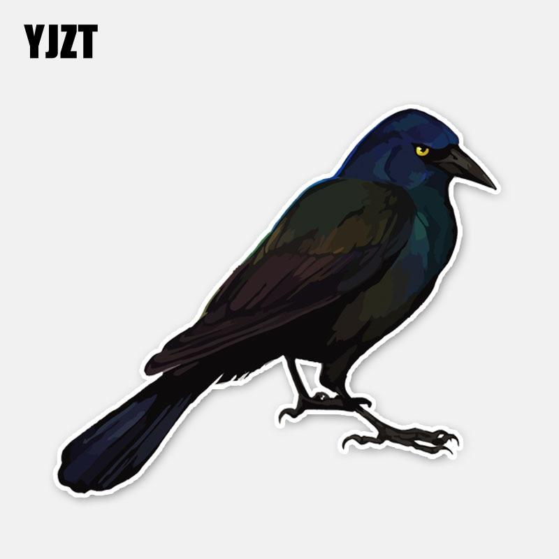 Pegatina de decoración de coche de cuervo misterioso YJZT 15,6*13,7 CM, gráfico personalizado de alta calidad 11A0388