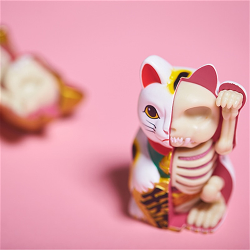 4D White money cat Intelligence Lucky cat Assembling toy Perspective Anatomy Model  DIY Popular Science Appliances