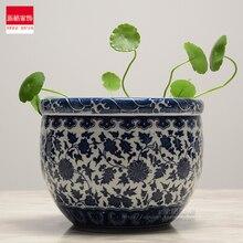 Jingdezhen-céramique de Jingdezhen   Personnalité créative de jardinage chinois dherbe et de Narcissus bleu-blanc, fleurs hydroponiques