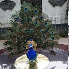 Grand 65x60cm simulation oiseau dur modèle plumes ailes propagation paon oiseau accessoire, maison jardin décoration cadeau s1155