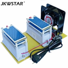 Générateur dozone en céramique Portable 220 V/110 V 20g Double intégré longue durée de vie plaque en céramique ozoniseur Air eau purificateur dair