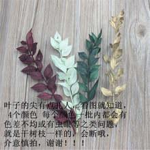 Envío Gratis, tocado de hoja congelada, flor decorativa hecha a mano, árbol de secado, hoja de mijo de nacimiento permanente, 2 uds