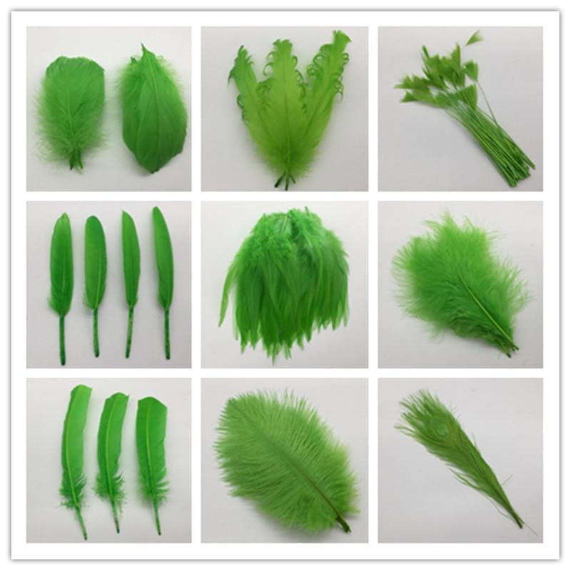 20pcs13 tipos verde de hermosas plumas de gallo 5-30cm pluma de pollo, faisán para decoración artesanal de fiesta DIY