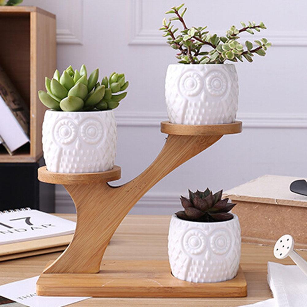 Patrón de búho de cerámica suculenta planta flor Pot titular plantador de estante de bambú de Rack hecha de cerámica de alta calidad material