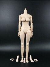 "1/6 12 ""menina pálido grande busto figura fêmea modelo do corpo n001 ajuste phicen headsculppt escultura cabeça modelo"