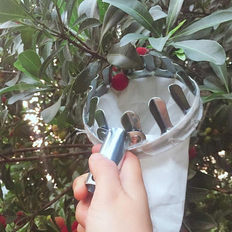 Vaisių rinkiklio krepšelio nešiojamasis vaisių gaudytuvas - Sodo įrankiai - Nuotrauka 5