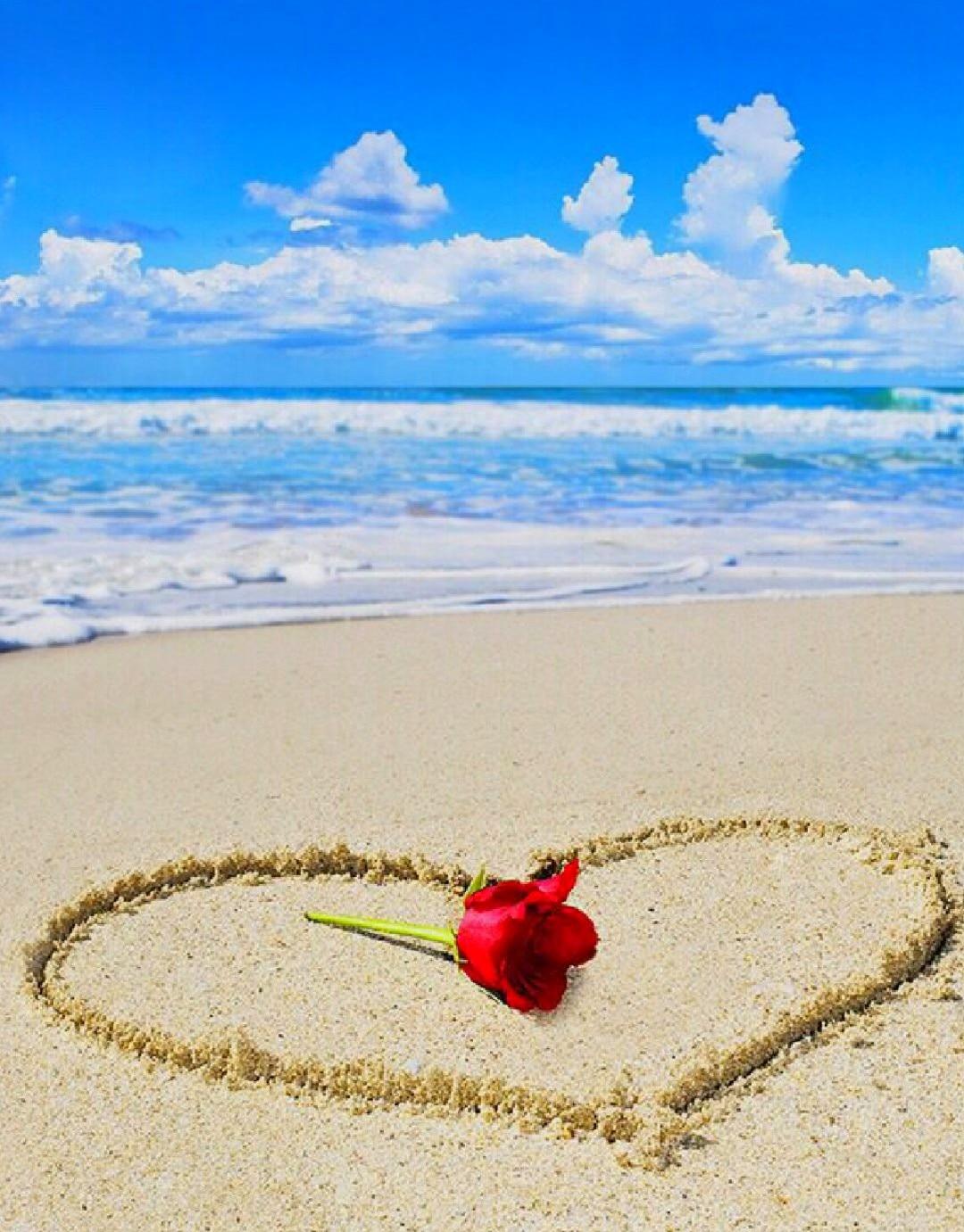 JMINE Div 5D mar playa flor corazón Rosa pintura completa diamante punto de cruz kits de Arte de boda 3D pintura por diamantes