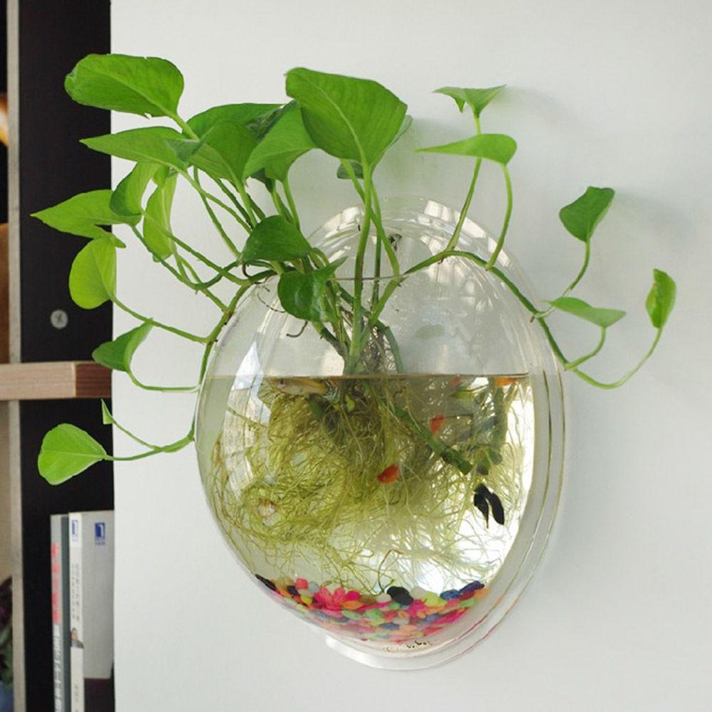 Terrario bola globo forma transparente colgante florero flor maceta macetas pared pecera recipiente acuario decoración hogar