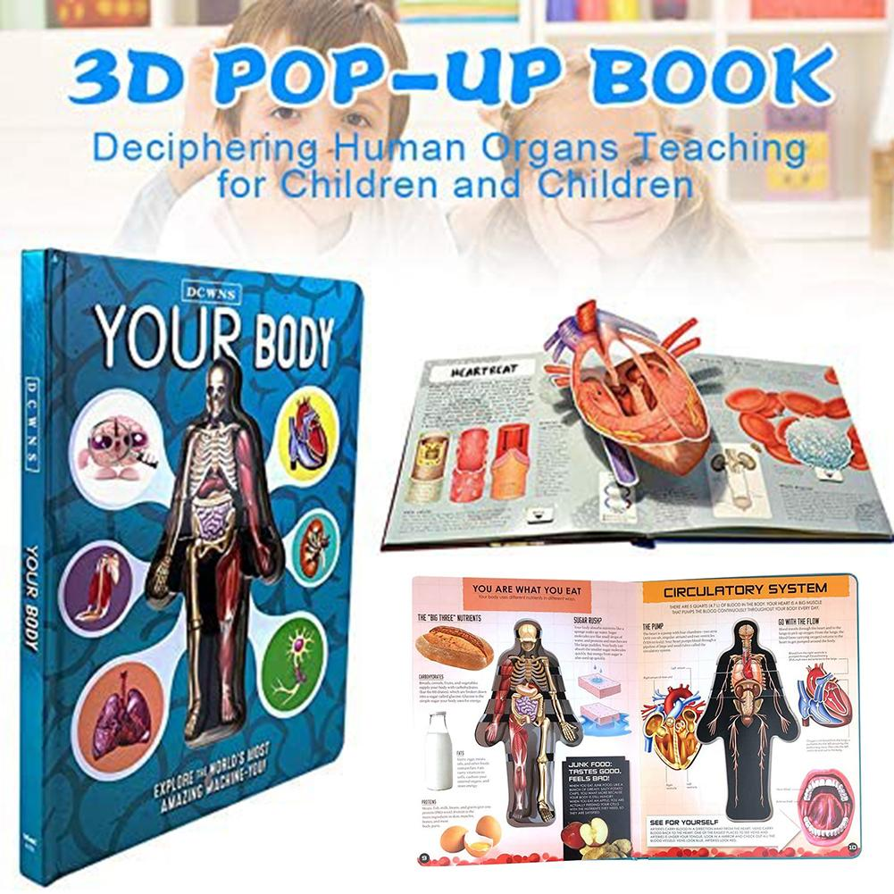 3D Picture Human Body Structure Book Anatomy Science Cognitive Reading Children Early Educational Books Kids Toys Random Cover