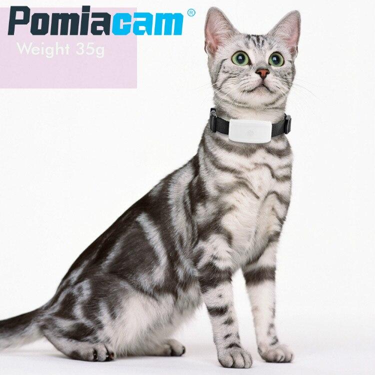 TK911 الحيوانات الأليفة الصغيرة متتبع تحديد المواقع للأطفال TKSTAR TK 911 للكلاب القطط الاطفال لتحديد المواقع + GSM + WIFI Locatoin ، لا صندوق هدية ، تتبع الك...