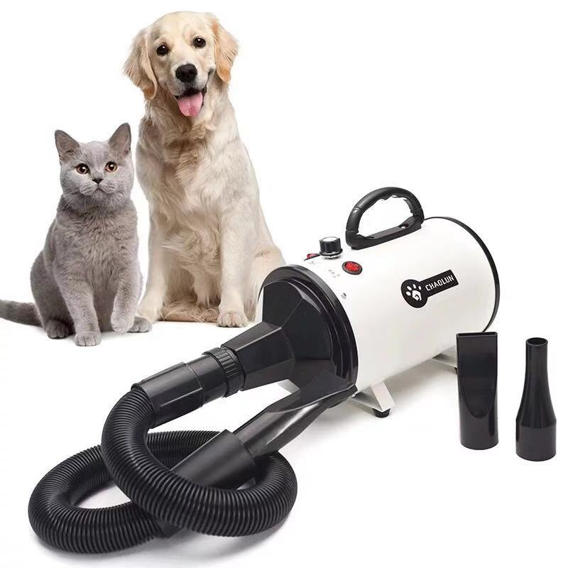 Soplador de agua para mascotas, secador de pelo para perros, gran potencia, silenciador, gato grande, artefacto especial de soplado en seco