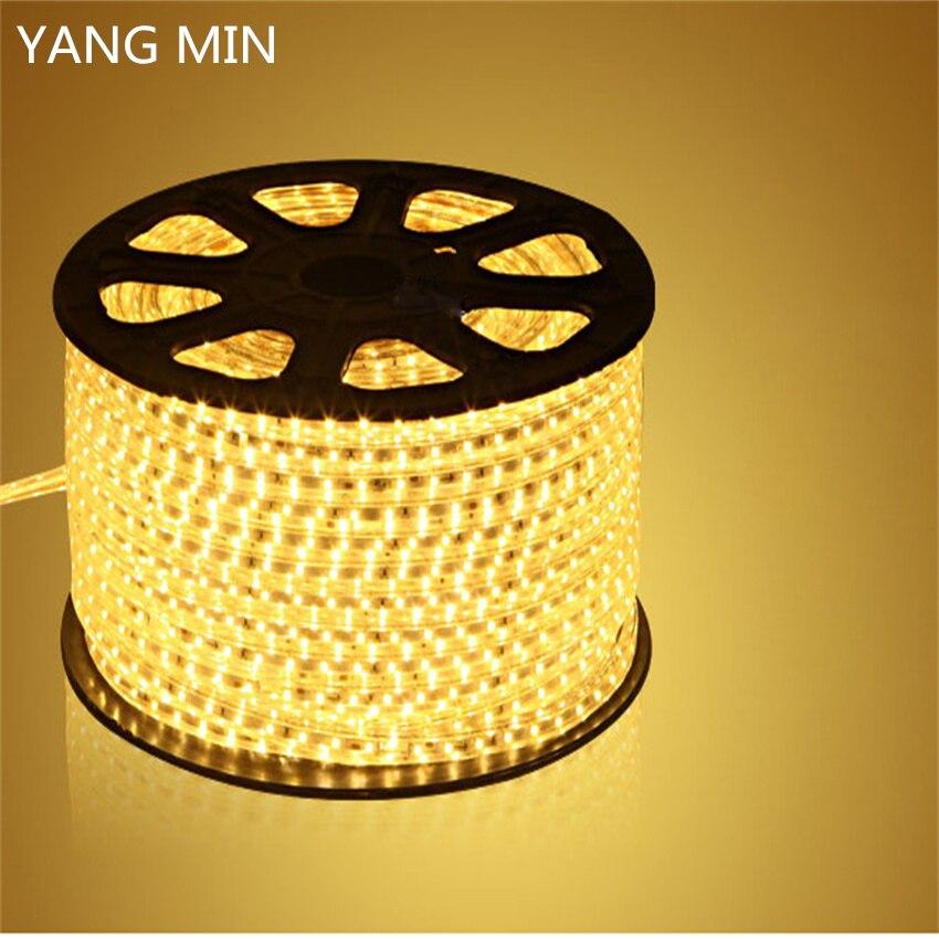 YNAGMIN FREE SHIPPING 50M/ROLL High Voltage AC110V 220V Waterproof LED Strip Light SMD 2835 LED Strip 3 YEARS WARRANTY