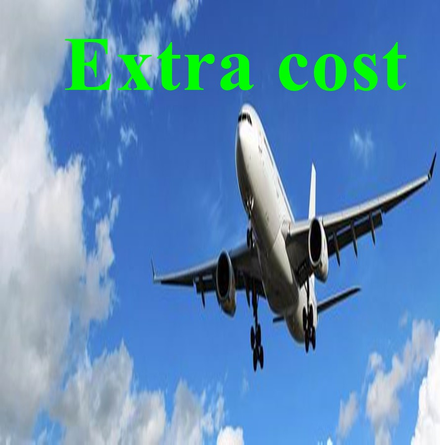 Special link for shipping cost Or Extra Cost Logistics Freight  Fare 3 usd for shipping cost custom label or other extra cost