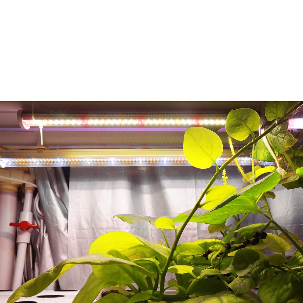 XRYL 10pcs CN RU DE US UK AU Full Spectrum Flower Seed Hydroponic Indoor LED Plant Led Grow Light Bar For Greenhouse Plant enlarge