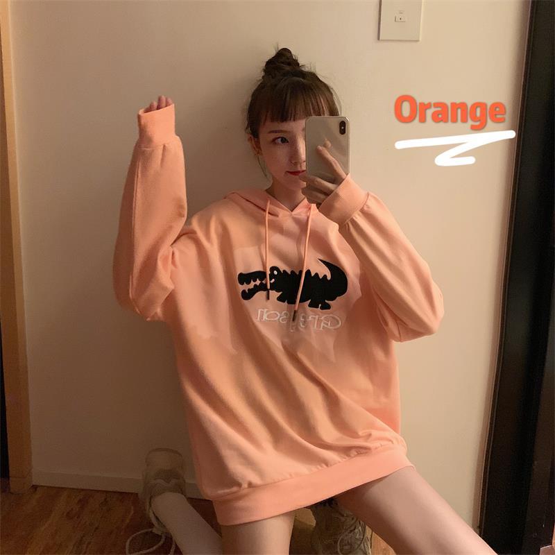Cute Cartoon Embroidered Hooded Sweatshirt Female Korean Kawaii Women's Sweatshirts Japanese Harajuku Ulzzang Clothing For Women