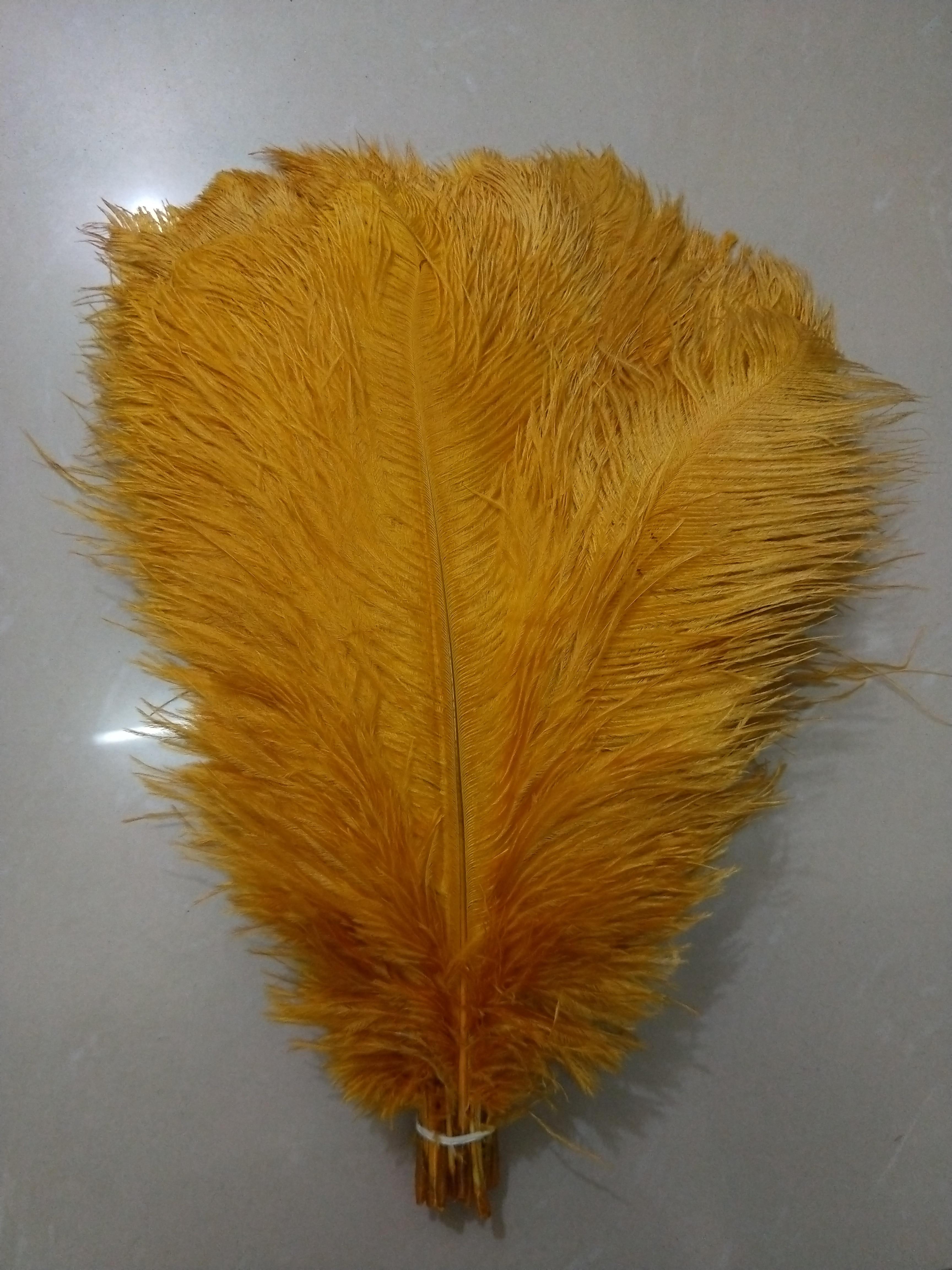 50 unids/lote de plumas de avestruz doradas 40-45 cm/16 to18 pulgadas, plumas de avestruz espléndidas para decoraciones de boda, penacho