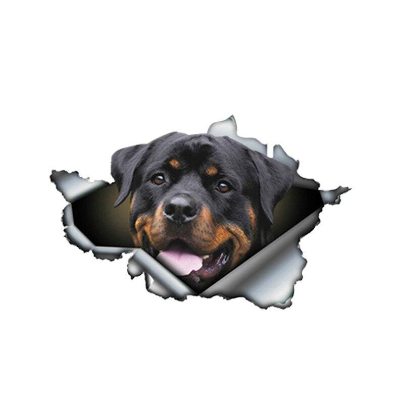 Автомобильные наклейки, Декор, мотоциклетные Переводные картинки, Переводные картинки для домашних животных и собак, декоративные аксессу...