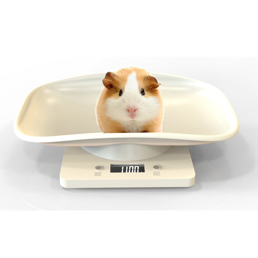 2g-10kg Digital Pet Scale Lcd Electronic Scales For Measure Pet High Precision Pet Multi-function We