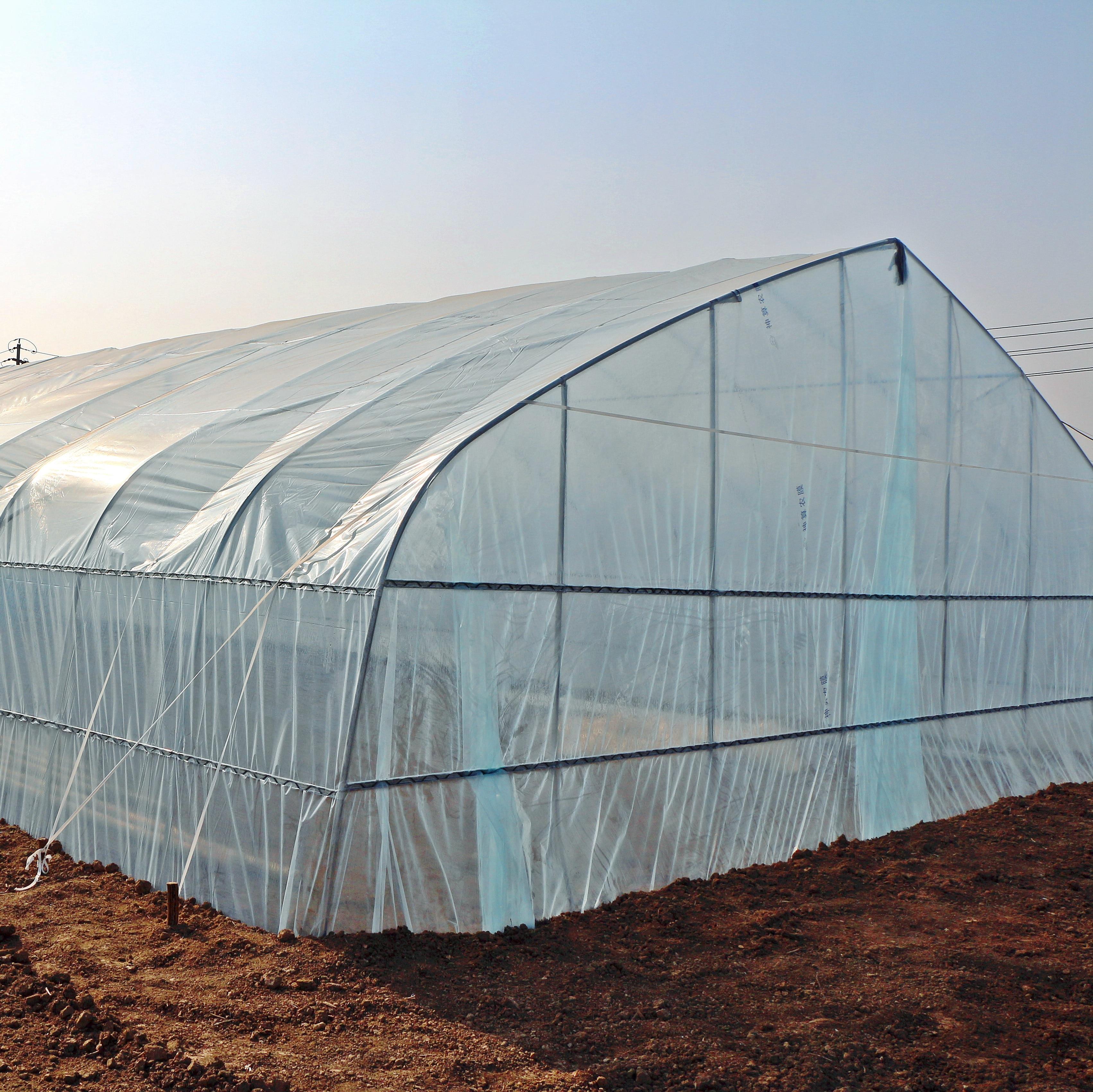 Sebze sera sera raf sera çadırı sera örtüsü aydınlatma sera sera tarım sera