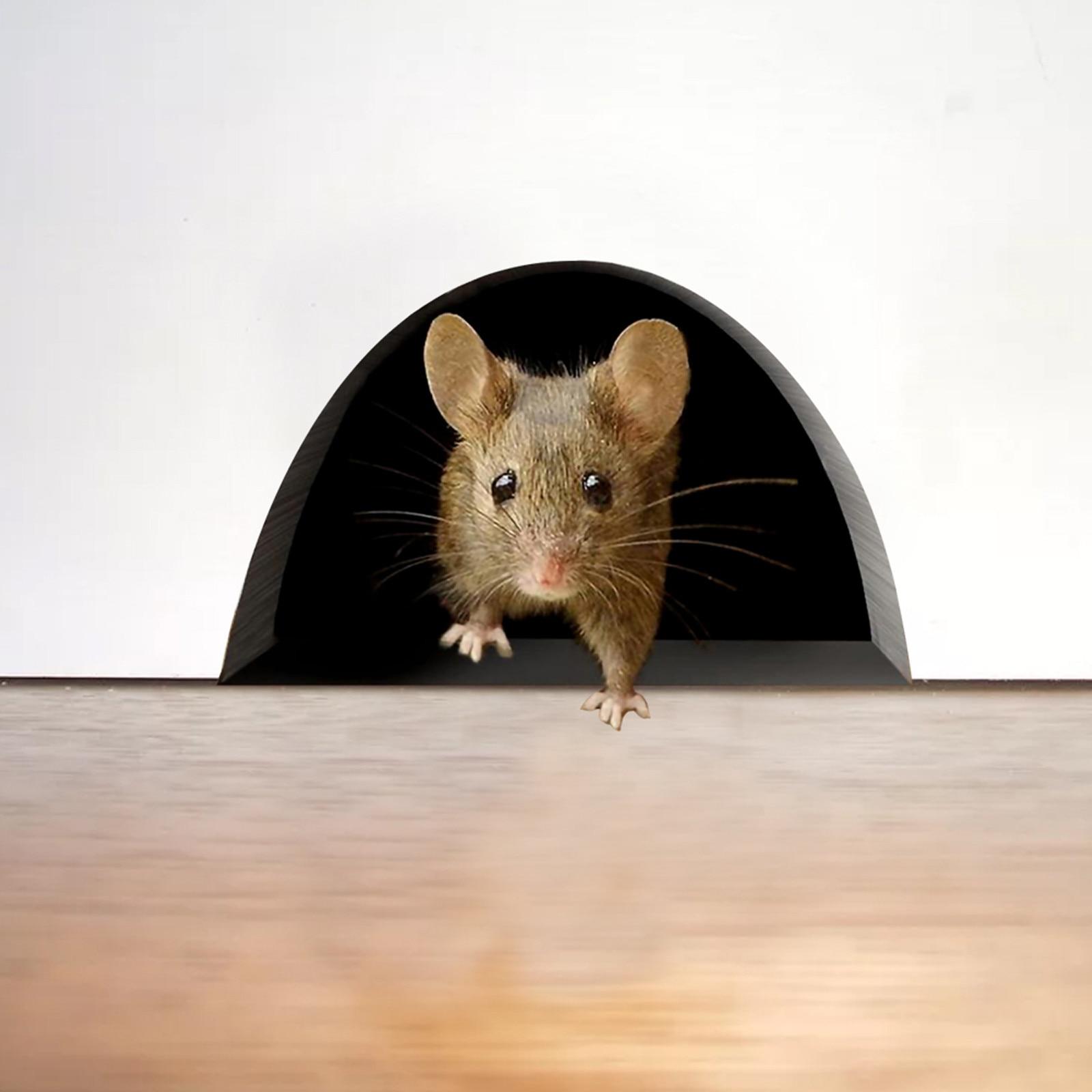 3d etiqueta de la Pared de ratón de dibujos animados niño decoración...