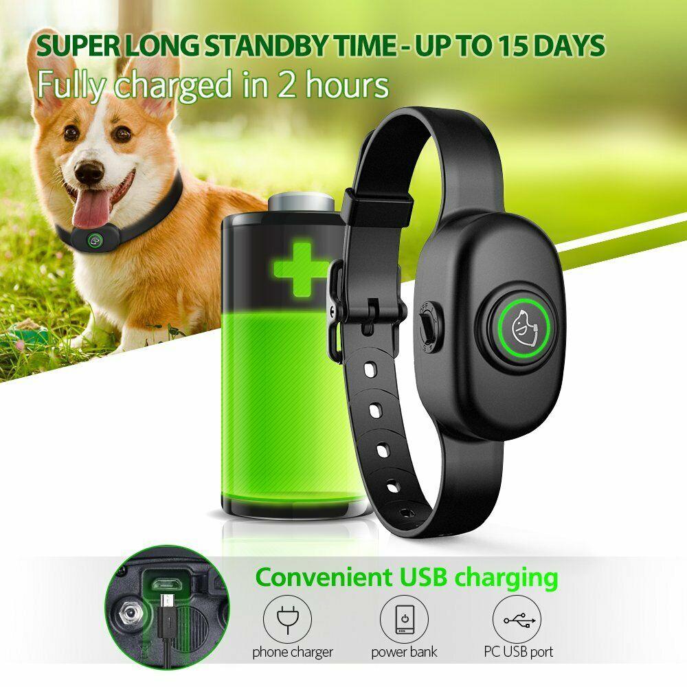 Electric Rechargeable Waterproof Small Dog Training Collar Shock Pet Dog Training Collar Anti-barking Automatic Vibration Collar