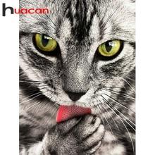 Huacan Diamond Painting Full Square Cat Kit 5D DIY Diamond Embroidery Mosaic Animal Decorations Home