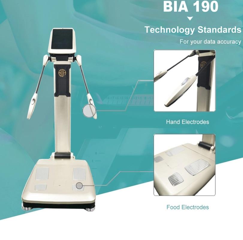 2020 احترافي!!! ميزان تحليل الدهون في الجسم/محلل تكوين الجسم/عنصر الجسم آلة محلل CE/DHL