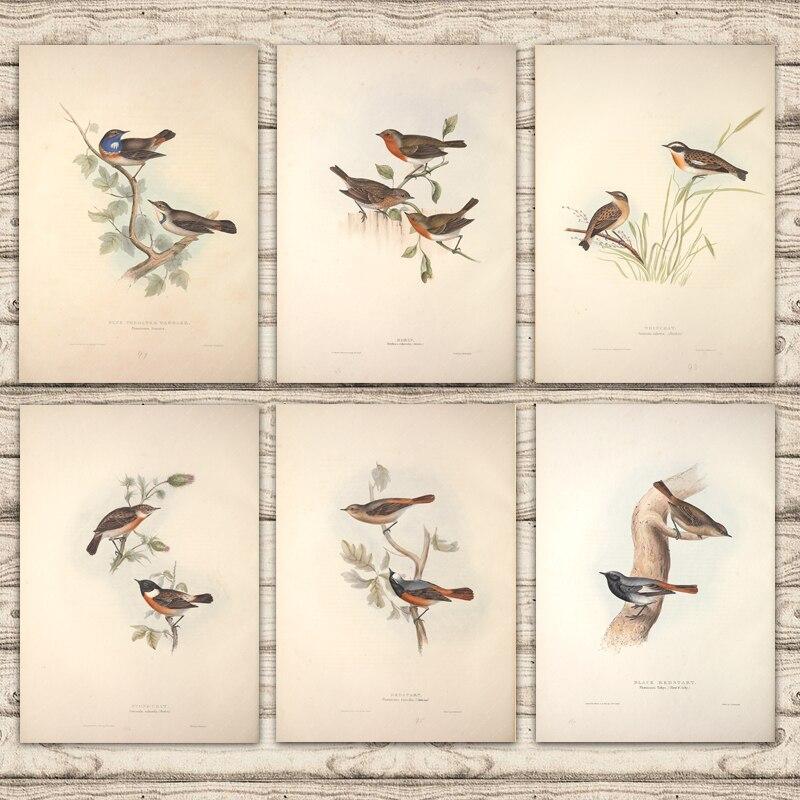 Europa pájaros Piedra de Arena Martin abeja Eater rodillo Kingfish lienzo pintura Vintage cartel de papel Kraft recubierto pegatina hogar Decoración regalo