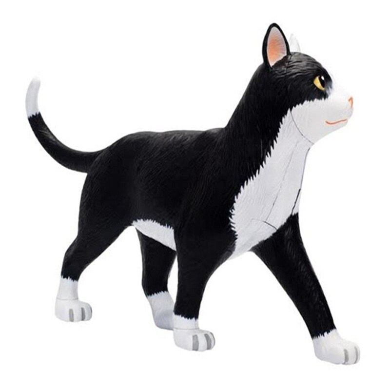 NEW   Black And White Cat Anatomical Model    Removable Simulation Animal     Medical Teaching Props