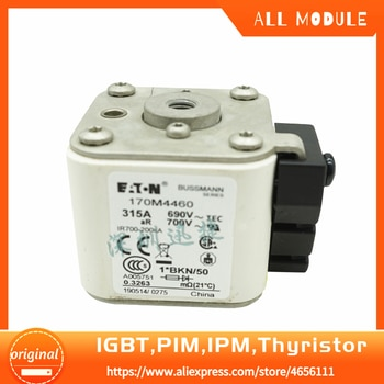 2pcs/lot 170M4460 with DHL fee New Fuse