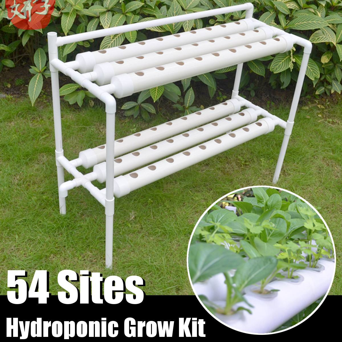 54 مواقع النباتات أنظمة المزارع المائية تنمو عدة الحضانة الأواني مكافحة الآفات Soilless زراعة داخلي حديقة زراعة الخضروات