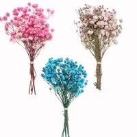 Mini fleurs sechees decoratives pour bebe  Bouquet de plantes naturelles  conservation florale pour mariage  decoration de maison