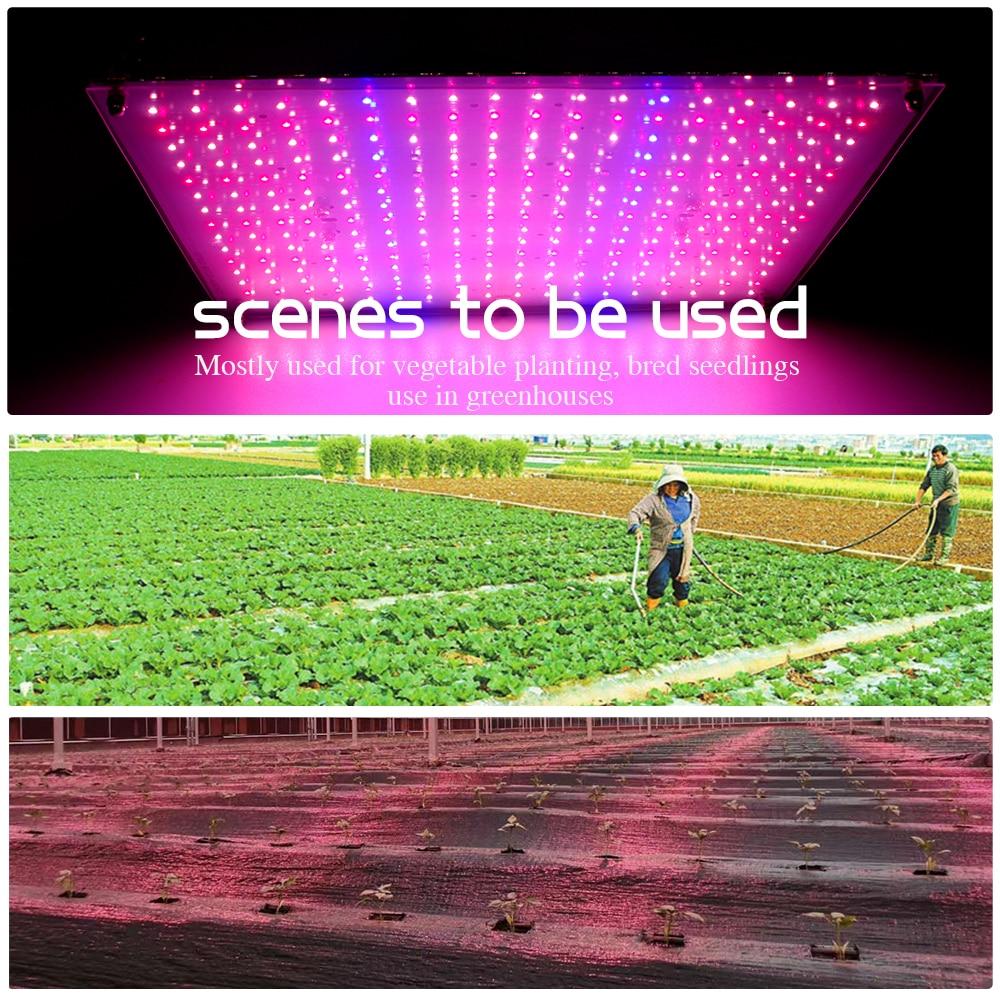 Indoor Lighting Hydroponics Grow  Light 100W  Portable  Plant  Herbs  Lamp For Grow  Tent enlarge