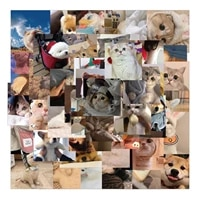 1048pcs new kawaii cat stickers decal for girl cute dog animal sticker to diy suitcase stationery fridge water bottle guitar