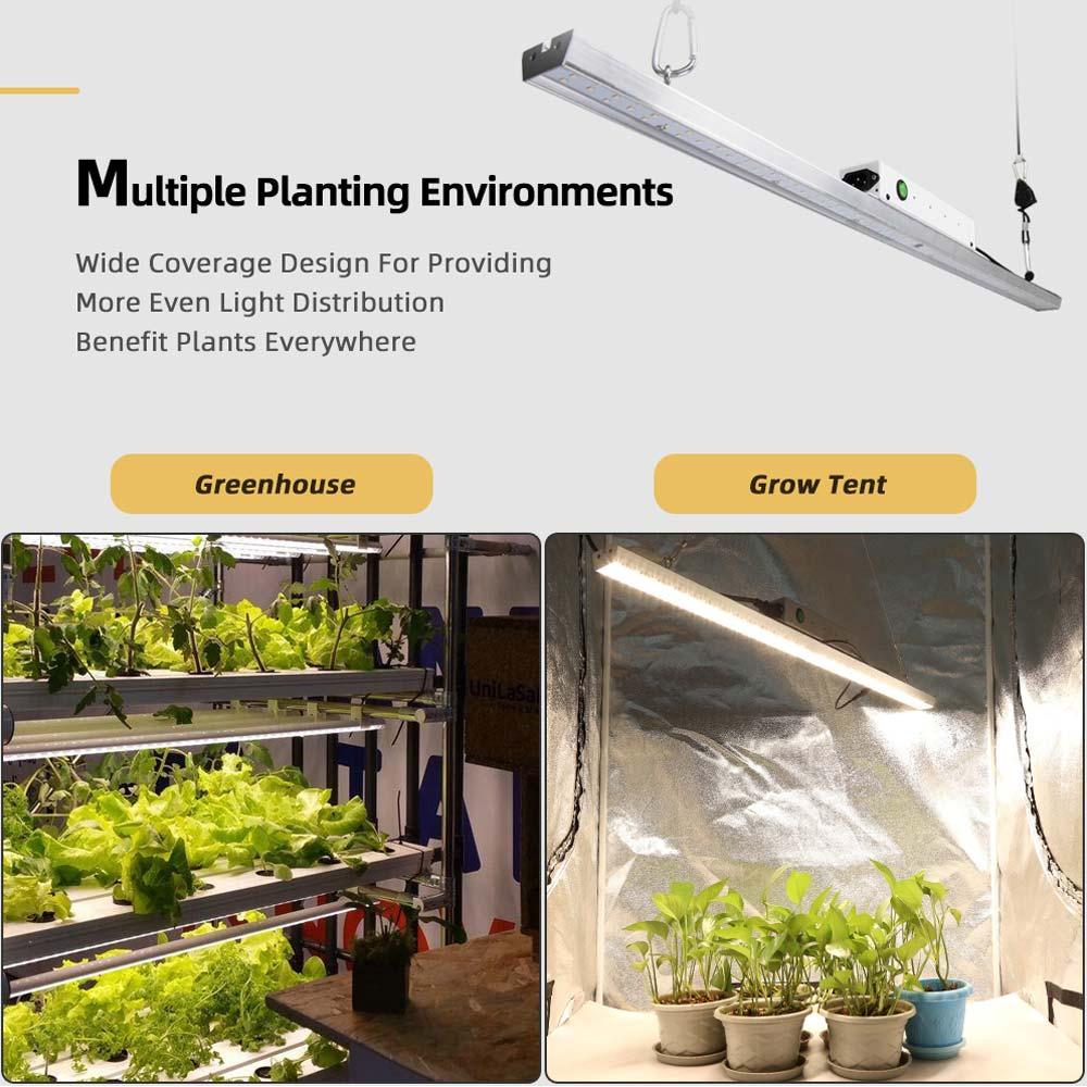 COB Quantum LED Grow Light Board Samsung LM301B Full Spectrum 300W UV IR Plant Growing Lamp For Indoor Plants Greenhouse Tent