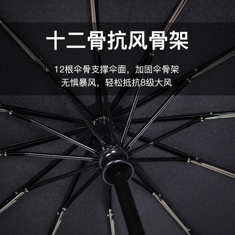 Anime Windproof Umbrella Rain Women Long Luxury Wedding Traditional Umbrella Personalized Paraguas Invertido Household Eg50ys enlarge