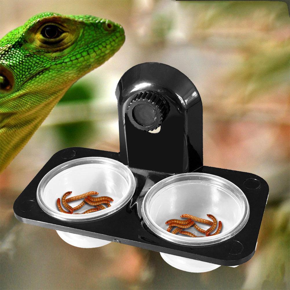 Recipiente de alimentación para comedero de reptiles de MeterMall, recipiente de alimentación para comida, Terrario de agua ABS, accesorios de gran calidad, venta Nobby