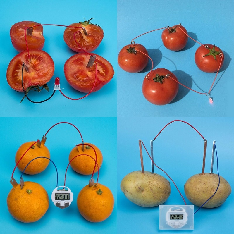 Bio Energy Science Kit Potato Fruit Supply Electricity Experiments Kids Children Student Learining S