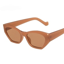 Fashion Cat Eye Irregular Sunglasses Women Vintage Clear Candy Color Eyewear Men Trending Polygon Su